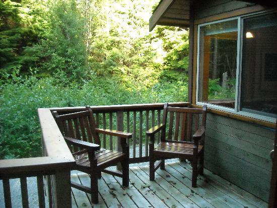 Evergreen Forest Cabins: The Deck