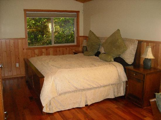 Evergreen Forest Cabins: The Most Comfortable Bed Ever
