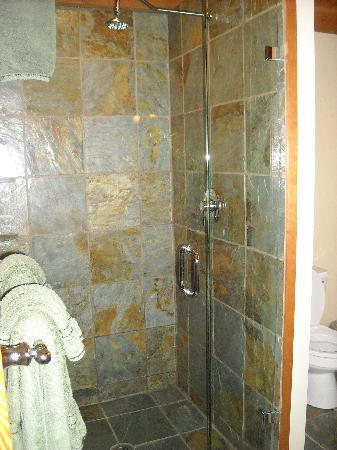 Evergreen Forest Cabins: Shower With Rain Shower Head