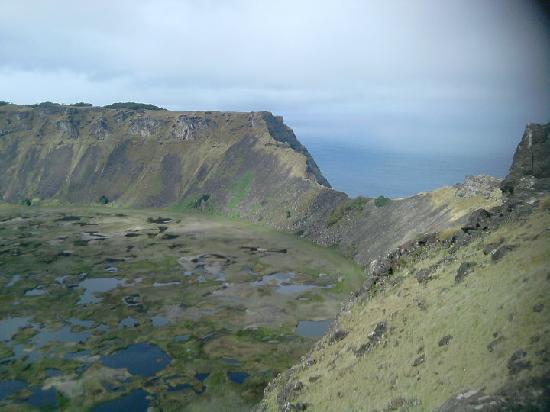 PakoBa Rapa Nui : EL ORONGO