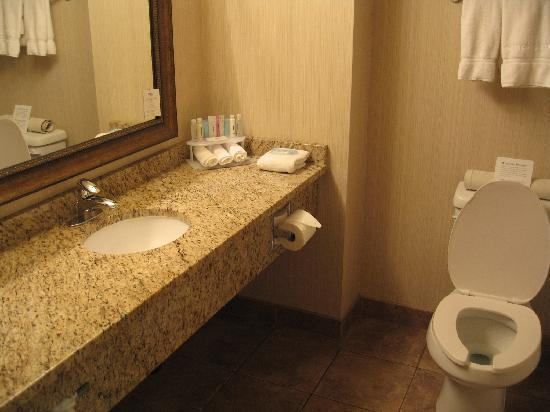 Holiday Inn Express Hotel & Suites Hinton: Bathroom