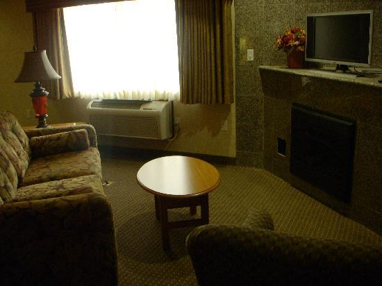 Rushmore Express Inn & Family Suites: Room 238 Living room, pull out couch with tones of bedding available