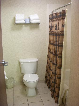 Kelly Inn and Suites Mitchell: bathroom