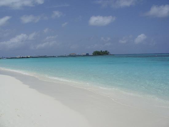 Kuredu Island Resort & Spa: seas