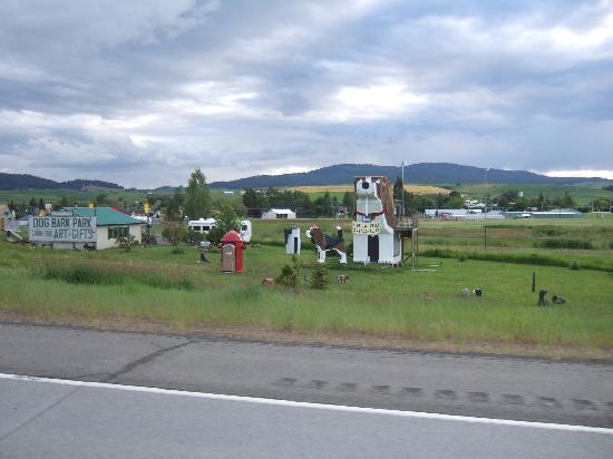 Dog Bark Park Inn: As seen from the road!