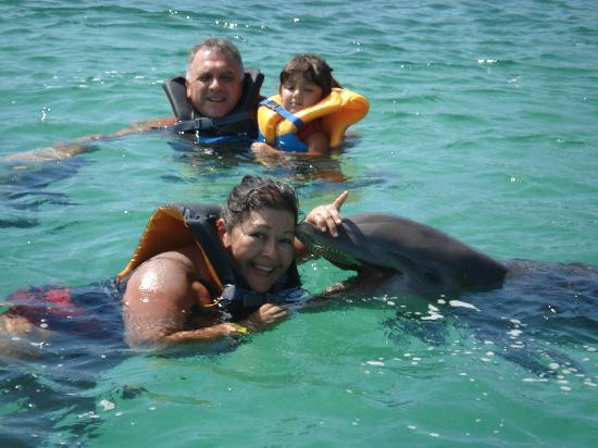 nadando con delfines en cayo largo