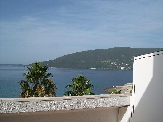 Vila Aleksandar : Balcony