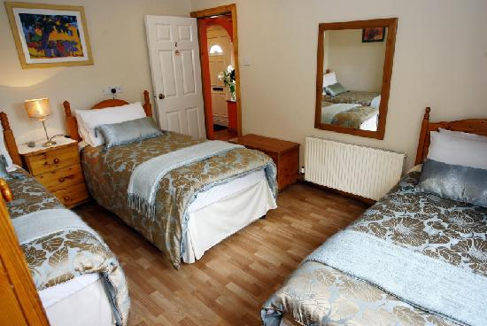 Almanii Bed & Breakfast: Twin/Triple Bedroom