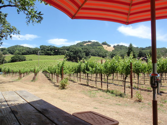 Sonoma, Kalifornien: Picnic table out in the vineyard for wine/cheese tasting