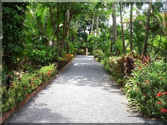 Starbay Beach and Gardens : Veranda 1