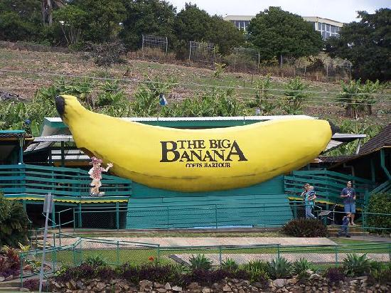 Coffs Harbour YHA: The BIG BANANNA