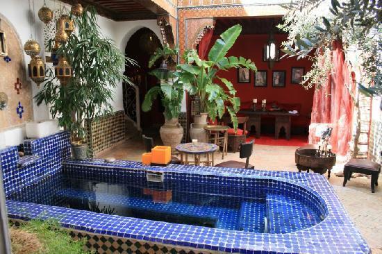 Riad La Terrasse des Oliviers: Riad dipping pool