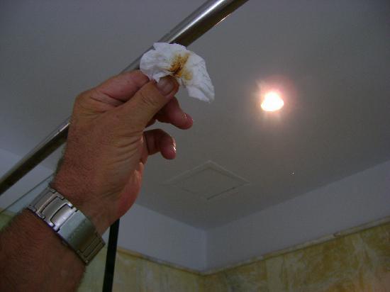 Q Signature Samui Beach Resort: Filth wiped off 5cm of shower rod