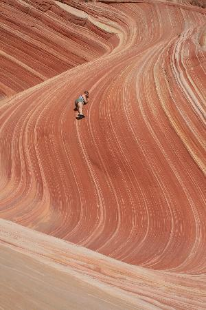 The Wave at Coyote Buttes: The Wave