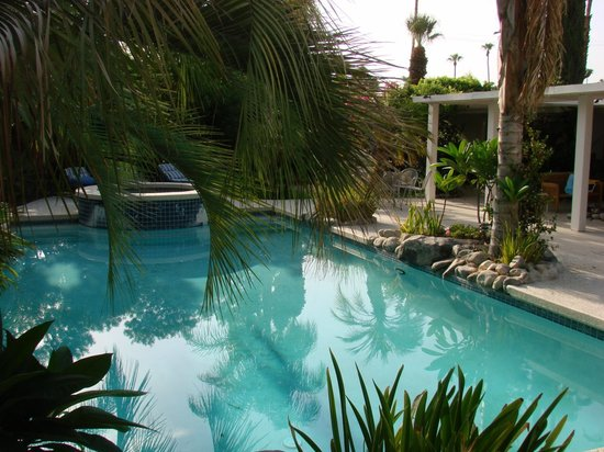 Sun Cabana : piscine