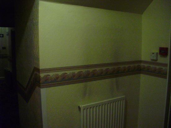 Paddock Guest House: Damp in corridor.
