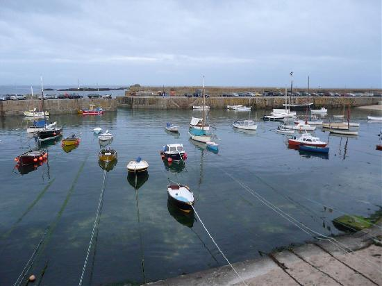 Lynvale Bed & Breakfast: Mousehole harbor