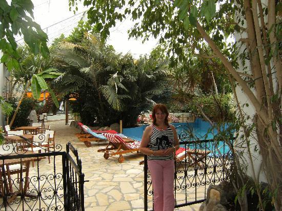 Tropical Hotel: côté piscine