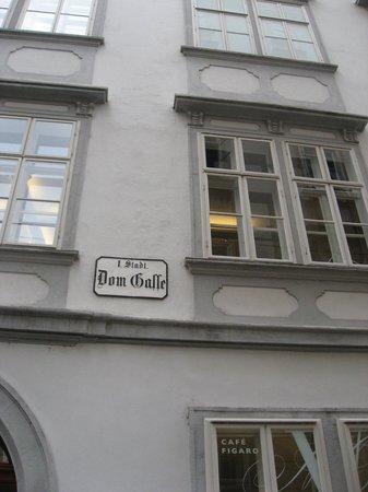 Mozarthaus Vienna : 住居