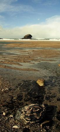 Low tide at Portreath