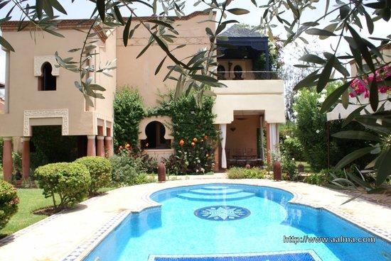 Villa Aalma: Rameaux d'olivier et piscine... Villa Aâlma à Marrakech