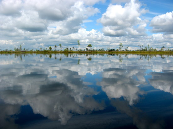Estonia: Lakes on the bog