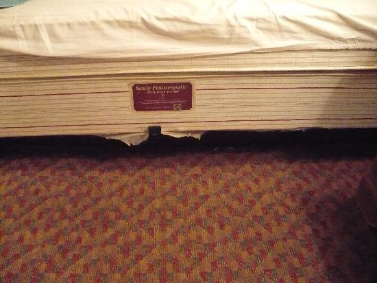 Cherrywood Lodge - Econo Lodge Inn & Suites : Mattress