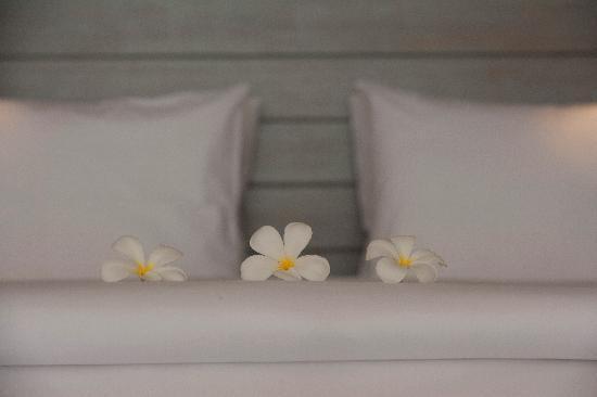 The Lombok Lodge: Selamat Tidur!