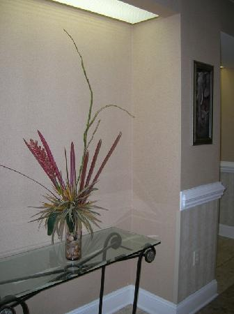 Hampton Inn and Suites Charlotte - Arrowood Rd. : pretty decoration