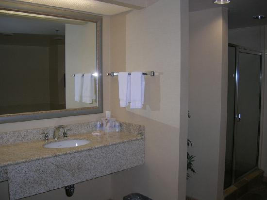 Hampton Inn and Suites Charlotte - Arrowood Rd. : big bathroom
