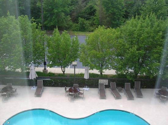 Hampton Inn Columbia Northeast-Fort Jackson Area : pool view