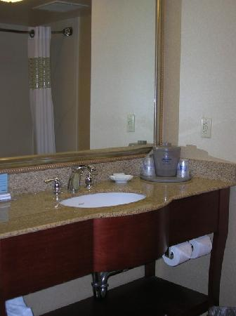 Hampton Inn Columbia Northeast-Fort Jackson Area : vanity area of bathroom