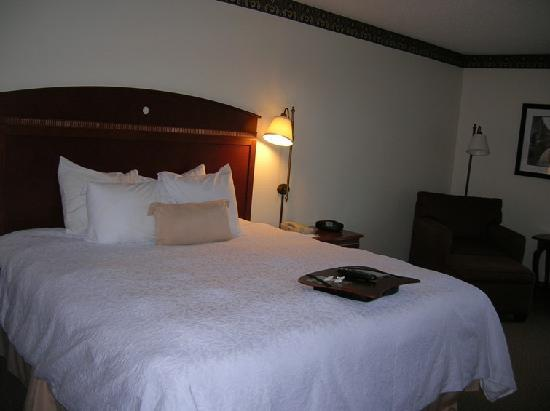 Hampton Inn Columbia Northeast-Fort Jackson Area : very comfy bed!