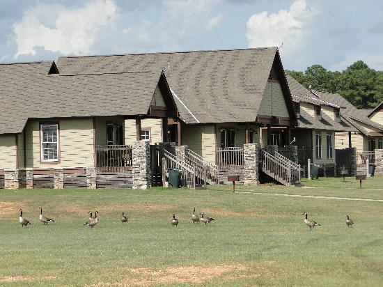 Eufaula, AL: Lakeside cottages
