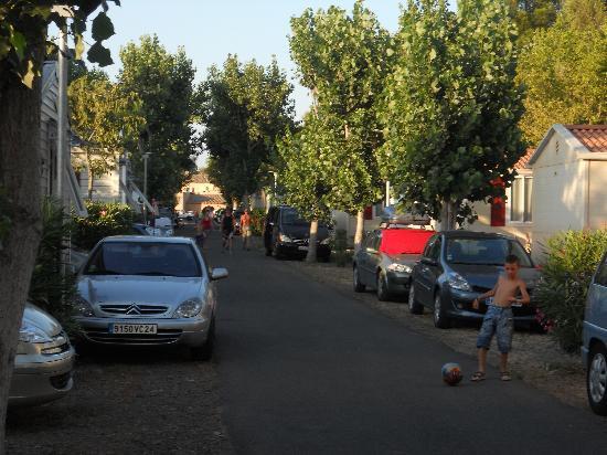 Camping Les Champs Blancs : allée des roses