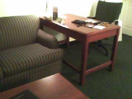 Lancaster Inn & Suites: Sofabed