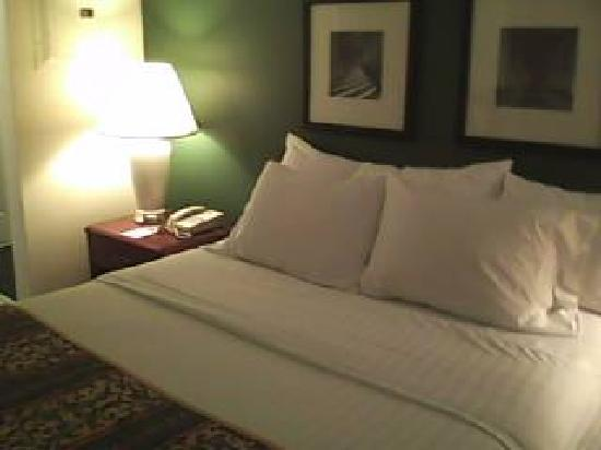 Lancaster Inn & Suites: Bed