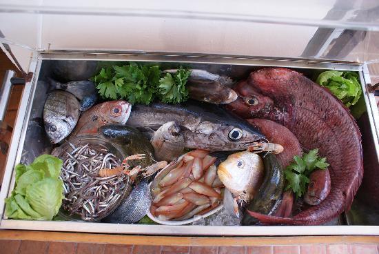 Lido La Pigna : la nosta vetrina del pesce