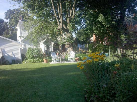 Absolute Elegance Bed and Breakfast : Backyard/Garden picture 1