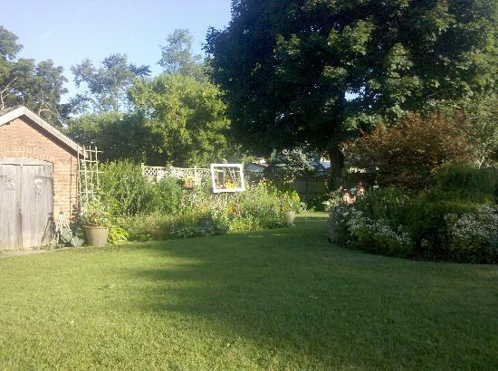 Absolute Elegance Bed and Breakfast : Backyard/Garden picture 2