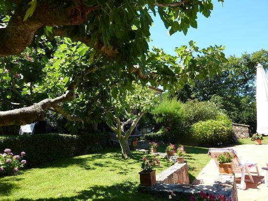 Chambres d'hotes Le Point d'Orgue : le jardin
