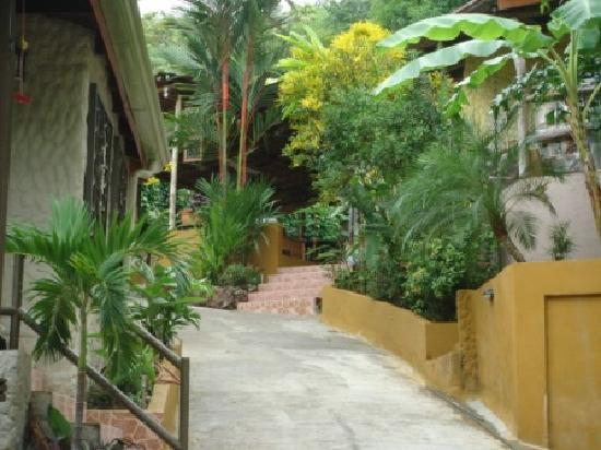 Coyaba Tropical Bed and Breakfast - Adults Only: From the moment you arrive, you will feel at home and relaxed