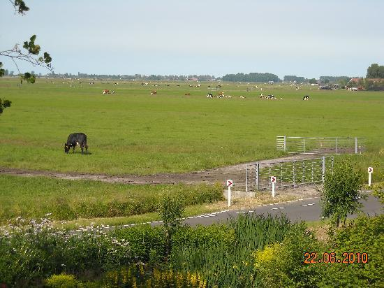 Overleekerhoeve: View from the room
