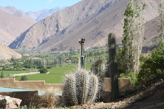 Cabanas Elquimista: This was the view we had from our private porch, up the valley towards the deep Andes.  Lovely!
