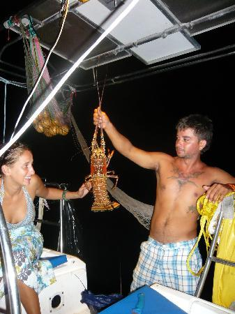 El Porvenir, Panamá: Lobsters for dinner!