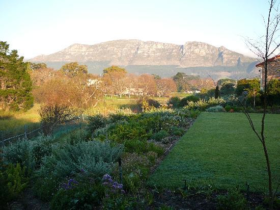 Dongola Guest House : Mountain view
