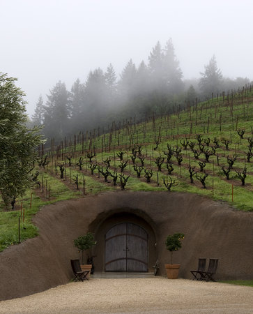 Bella Vineyards and Wine Caves