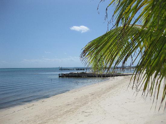 Las Terrazas Resort: The beach at Las Terrazas