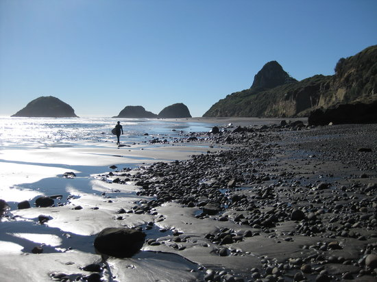 New Plymouth, Yeni Zelanda: Back Beach Low Tide