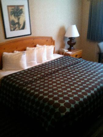 Civic Center Motor Inn: King room
